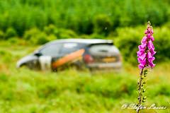 DSC_7837 (Salmix_ie) Tags: park ireland car sport club hotel championship nikon rally sunday border july stages lee motor 10th nikkor pallets connacht motorsport sligo 2016 d7100 pacenotes