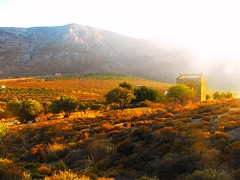 dry land under the summer sun ~ Greece ~ Kalymnos ~ M Lamprinos (M Lamprinos) Tags: greece kalymnos vathi stimenia sun abandoned house field land landscape dry sullight sunset mountain mountains trees terrain wild outdoor dodecanese summer greek traditional