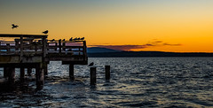 Catching Daylight's End (jeanmarie shelton) Tags: jeanmarieshelton jeanmarie sunset ocean outdoors outdoor orange serene sea oceanlife dock architecture sky clouds whidbeyisland waterscape water wastate landscape seascape