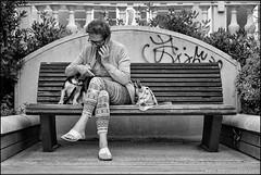 Cattolica (RN) (malko59) Tags: italia italy street biancoenero blackandwhite cane dog panchina bench