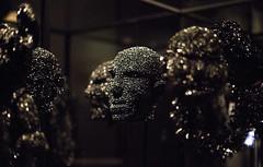 Scar Tissue by Fiona Hall (Kate Farquharson) Tags: museumofoldandnewart mona tasmania canon5dmarkiii scartissue fionahall australianartists contemporaryart vhs