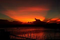 ~Rays after sunset~ >>>>>>2 (~~ASIF~~) Tags: canon60d outdoor sunset sky cloud dusk silhouette sunrays color beautifulbangladesh framebangladesh