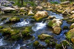 In the river... (Martika64) Tags: photoshopcreativo