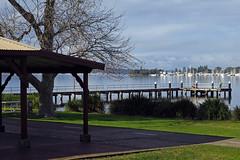 Speers Point Park (Tim J Keegan) Tags: australia nsw huntervalley lakemacquarie speerspoint speerspointpark park lake marmongpointmarina cocklebay