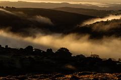 Sunrise and the fog (NikNak Allen) Tags: plymouth devon dartmoor moor moorland tree trees tor tors hill hills grasses grass distance view horizon landscape valley mist sun sky light morning shadows gold golden