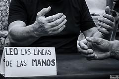 Palm reading (danielfi) Tags: bn bw lneas manos mercado market dalias ibiza eivissa palm reading