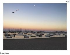 Mar y aire (anluca1) Tags: fotografa angelcanales iphone6s marmenor los alcazares patrulla aguila puerto