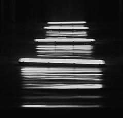 StairLight (slivinska) Tags: minimalism blackandwhite lights stairs abstraction alina sliwinska alinasliwinska amarillis