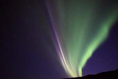 Iceland _NEW8482 (Daniele Pisani) Tags: aurora boreale islanda iceland