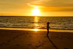 Mindil Beach Combing (Andrew Permezel) Tags: sunset beach clouds sand australia darwin northernterritory mindilbeach