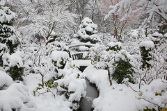 Lower garden stream after heavy  spring snow (Four Seasons Garden) Tags: uk england snow garden four march early spring seasons walsall midlands