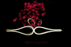 My love is an open book (Valadis Kostas Papadopoulos, Volos) Tags: red white love ads book open bokeh greece page product volos valadis adnertisment