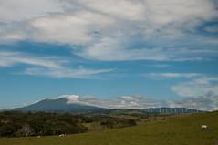 Wide Expanse (wenzday01) Tags: travel mountain nikon costarica driving hill windmills nikkor windfarm guanacaste d90 nikond90 18105mmf3556gedafsvrdx
