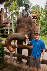 petting an elephant (Sam Scholes) Tags: travel vacation bali elephant me animal digital indonesia zoo nikon sam adventure asianelephant elephasmaximus d300 sukawati balizoo singapadu kebunbinatangbali jalanrayasingapadu