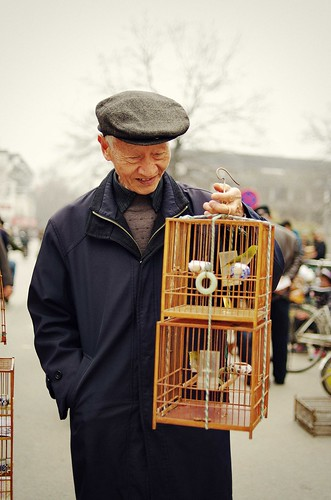 Old man with his birds