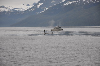 Alaska Adventure Vacation - Sitka 33