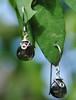 Dew Drop earrings (tdeejewelry) Tags: bali silver wire handmade earring jewelry smokeyquartz