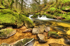 Golitha Falls_3131HDR_ By Phil Ovens (Pitcher_Phil) Tags: trees lake water misty woodland waterfall oak rocks boulders valley ash gorge lichens hdr beautyspot weir fallentrees ancientwoodland riverfowey golithafalls textureslongexposure