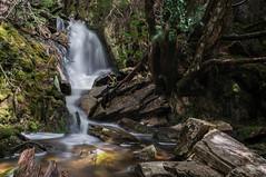 Cradle Falls (lower) (Ross L (Instagram - @ThisisRossco)) Tags: mountain lake fall water waterfall long exposure hiking dove sony tasmania cradle
