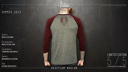 Asseylum Raglan (back)