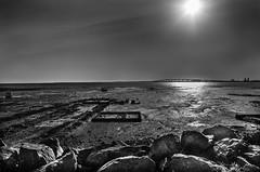 basse mer (fsebastien54) Tags: mare basse pentax k5ii mer charente maritime ile de re noir et blanc contre jour 18135 pont la rochelle rochers pierres bord
