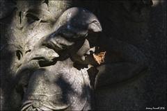 Greenbank Cemetery (zolaczakl ( 2 million views, thanks everyone)) Tags: cemetery gravestones graveyard grave angels leaf greenbankcemetery greenbank easton lightshadow uk england southwest bristol sculpture july 2016 photographybyjeremyfennell nikond7100 nikonafsnikkor24120mmf4gedvrlens