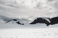 Dog Sledding (Bill McBride Photography) Tags: dog sledding alaska ak chugach national forest snow mountains clouds sky landscape scenery punchbowl glacier canon eos 70d efs18135stm summer july 2016