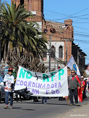 Marcha de un sistema en ruinas... No+AFP (Ricardo Obando) Tags: sanfernando noafp chile patromonio marcha marchando protesta canon t5i