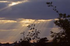 2016.05.14.01 NOISY-LE-GRAND (alainmichot93 (Bonjour  tous)) Tags: 2016 france ledefrance seinesaintdenis noisylegrand ciel nuage coucherdesoleil rayon