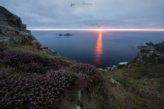 Carn gloose heather and sunset (T_J_P) Tags: cornwall carngloose sunset coast cliffs heather colour sea ocean