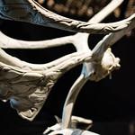 Inuit sculpture, Musée des Confluences, Lyon, France thumbnail