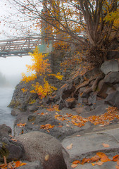 winter is coming (reserves13) Tags: leaves autumn autumncolors bridge orange spokane easternwashington northwest