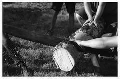 """Au Pardon de Saint-Laurent... 14 secondes à battre""/"" Saint-Lawrence Pardon... 14 seconds to beat"" (The Blue Water Lily's Company) Tags: afd analog analogue analogique analogico blackandwhite noiretblanc blancoynegro biancoenero nb bw fdrouet monochrome monochrom f801s nikkor nikon 50mm18 scan epson v370 lc29 ilford fp4 grain bretagne brittany breton rural scie saw"