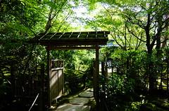 Into the garden (T.Machi) Tags: gate shadow garden japan kyoto xf1 fujifilm temple