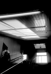 X (x axis) (Dinasty_Oomae) Tags: nagel vollenda   6x9   blackandwhite blackwhite monochrome bw        chiba funabashi yakuendai station shinkeiseiline shinkeisei  steps  dawn