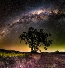 Milky Way nightscape - Felton - Queensland - Australia