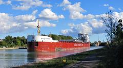 BAIE COMEAU (delticfan) Tags: baiecomeau laker wellandcanal stcatharines bulkcarrier portweller