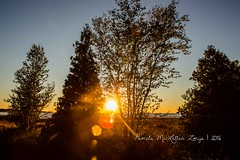 20160828-IMG_7749-WM (Pamela McLellan Zmija) Tags: saugeenshores portelgin sunset beach lakehuron goblesgrove sunshine pamelamclellanzmija