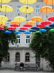 Schirmherr (NoDurians) Tags: schirme umbrella umbrellas dornerplatz wien vienna 1170 spaceandplace regenwald