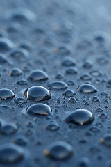 366 - Image 275 - Droplets... (Gary Neville) Tags: 365 365images 366 366images photoaday 2016 sonycybershotrx100 sony sonycybershotrx100iii rx100 raynox mk3 garyneville
