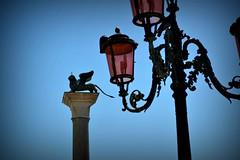 DSC_0323 (ricardo0404) Tags: honeymoon itlia luademel ricardocardoso ricardo0404gmailcom veneza rcardoso ricardo cardoso italy italia venice venezia