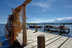 Ponton (RS...) Tags: corse tangdurbino ponton pcheurs filets d800 fishermanswharf