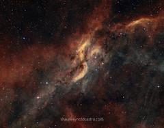 Cosmic Proppeler   DWB-111 (Shaun Reynolds) Tags: nebula proppeler dwb stars space deepsky astrophotogrphy