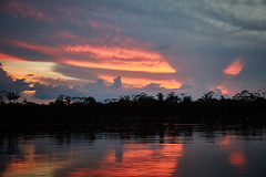 Amazon River-Jungle ( cilantrophotos) Tags: sunset amazon river jungle southamerica colors nature trip humanitarian photographers environmentalists canoe life lonely planet canon 5dmarkiii village wild animals amazing tree green light clouds