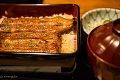 broiled eel served over rice a lacquered box (Yorkey&Rin) Tags: 2016 aoyama cuisine em5 eel japan lumixg20f17 lunch olympus rin september summer t9021978 tokyo unagi