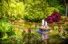 """""""A Little Bit of Paradise""""    Butchart Gardens, BC, Canada (Cathy Lorraine) Tags: butchartgardens brentwoodbay britishcolumbia canada victoria vancouverisland nationalhistoricsite floralgardens trees flowers dazzling plants fountain pond water ngc thesunshinegroup coth5 sunrays5"""