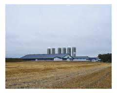 mtabetchouan (Mriol Lehmann) Tags: barn cereals farm fields landscape rural silos mtabetchouan qubec canada
