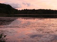(robinsing59) Tags: sunset cloud pond