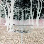 Basket #9
