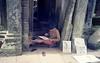 Temple Painter… (Attila con la cámara) Tags: film analog 35mm temple cambodia kodak olympus painter pointandshoot angkor epic mjuii profoto xl100 filmisnotdead istillshootfilm